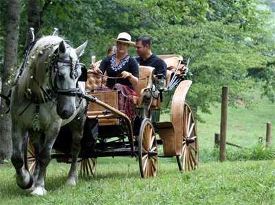 Smoky Mountain Picnic Romantic Carriage Rides