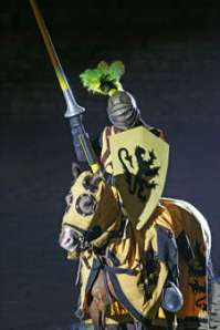 knight from medieval times