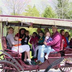 Mackinac Island Carriage Tours