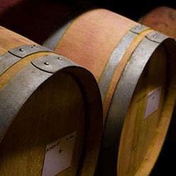 San Antonio Wine Tour